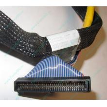Кабель SCSI HP 166298-037 для HP ML370 G4 (Керчь)